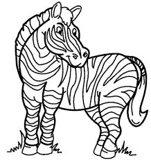 Small Picture Printable zebra coloring page Coloringpagebookcom