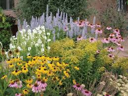 Small Picture 51 best Flower border images on Pinterest Companion planting