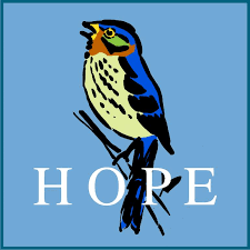 Little Hope Bird Drawing by Kathy Deal | Saatchi Art