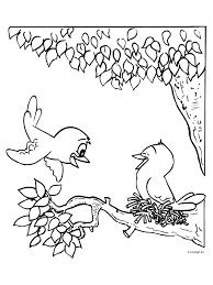Kleurplaat Vogels Bouwen Een Nestje Kleurplatennl