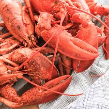 just maine lobsters