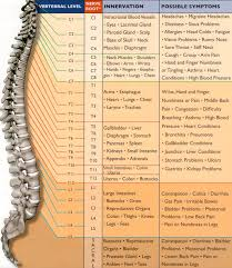 Chiropractic Body Chart Hayes Chiropractic Health Clinic