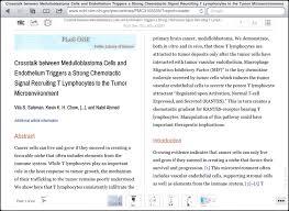 my essay geek english essay writing services writing social viper essay checker review sample