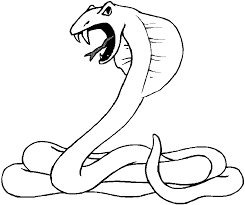 Small Picture Snake Coloring Pages Free Printable Coloring Pages