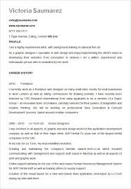 Resume Format Template Mesmerizing 28 Best Resume Formats PDF DOC Free Premium Templates