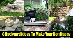 Small Picture Design of Dog Backyard Ideas Dog Friendly Backyards Healthy Paws