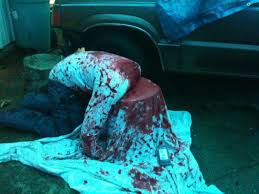 7e381c53bd07bab46d2de69e5fb halloween yard props halloween zombie