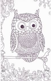 Owls Coloring Book Noelle L