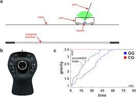 interacting learning processes during skill acquisition learning to control with gradually changing system dynamics scientific reports