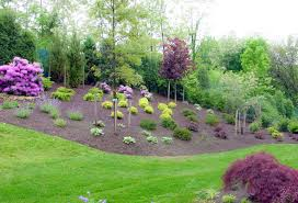 yard landscaping ideas small area