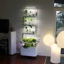 green wall vertical hydroponic garden