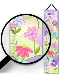 Toad And Lily Growth Chart Toad And Lily Purple Garden Personalized Growth Chart Zulily