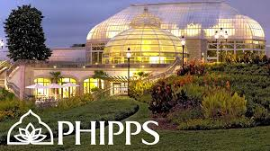 artist residency at phipps conservatory and botanical gardens ashley cecil