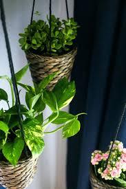 indoor hanging planters indoor hanging pots australia indoor hanging  planters diy hanging wall planters indoor australia