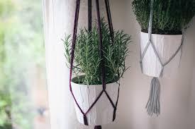 simple macramé plant hanger