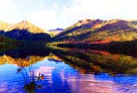 Западно Алтайский Национальный Природный заповедник  Западно Алтайский Природный заповедник Экология Казахстан