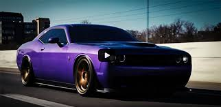Modern Muscle Cars Ford Mustang Shelby Muscle Cars Hq