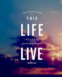 Short Quotes About Life Gorgeous 48 Most Amazing Short Life Quotes Pictures Short Life Slogan