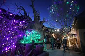 Zoo Lights Colorado 15 Things To Do Around Colorado Springs This Weekend Arts