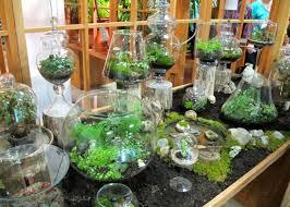 indoor gardening. Indoor Gardening Idea