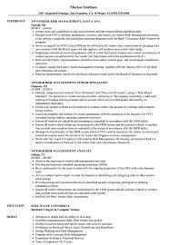 Sample Resume Management Vendor Risk Management Resume Samples Velvet Jobs