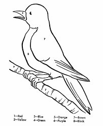 Small Picture Baby Robin Coloring Pages Coloring Coloring Pages