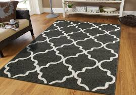 image of elegant washable accent rugs