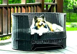 outdoor wicker dog bed with canopy outdoor dog bed with canopy outdoor dog bed with canopy