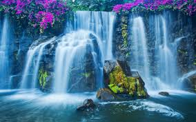 A Waterfall Is A Place Where Flowing Water Rapidly Drops In