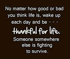 Life Inspirational Quotes Interesting Thankful For Life Inspirational Quotes Legends Quotes