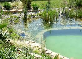 185 best Natural Pools images on Pinterest Natural swimming pools