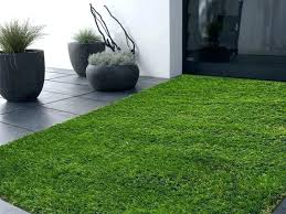 rug that looks like grass indoor outdoor artificial grass 5 x 8 area rug in rug that looks like grass man cave rugs