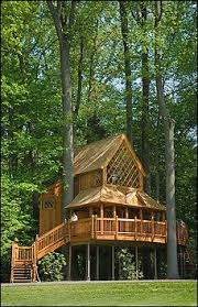 Unique Tree Homes  Httpswwwrenobackcomgranitecountertops Treehouse Builder Pete Nelson