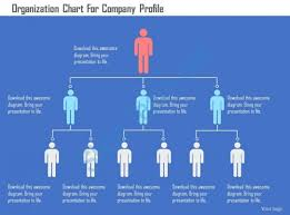 Company Profile Format Sample Interesting Organization Chart For Company Profile Flat Powerpoint Design