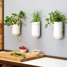 Image of: Porcelain Wall Herb Planter