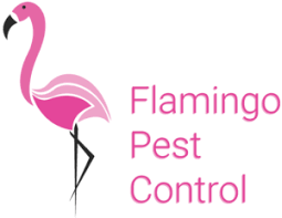 florida pest control st augustine. Exellent Augustine St Augustine Florida U2013 Having A Mosquito Roach Or Termite Problem Can  Be Common In Florida To Answer The Growing Need For Pest Control  With Pest Control St Augustine