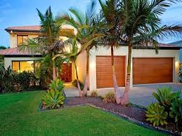 Small Picture Love these small palm trees Ideas for my garden Pinterest