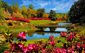lovely spring season hd free wallpaper