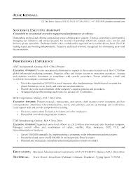 Example Of Resume Summary Beauteous Executive Summary Resume Example Catarco