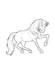 Kleurplaat Galloperend Paard Gratis Paarden Kleurplaten Page 2