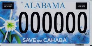 Revenue Save – Cahaba Of Alabama River The Department
