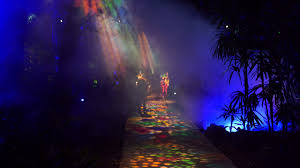 the night garden at fairchild 4k hd sony a7 iii sigma 35mm f1 4 art low light performance test