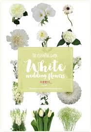 Check spelling or type a new query. White Wedding Flowers Guide Types Of White Flowers Names Pics