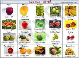 Hindi Birds Name Chart Free Hindi Charts For Kids Fruits Hinditeacheronline Com