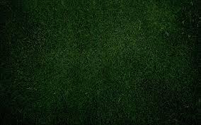 plain green wallpaper hd. Beautiful Plain Plain Blue Desktop Wallpaper  WallpaperToon To Green Hd E