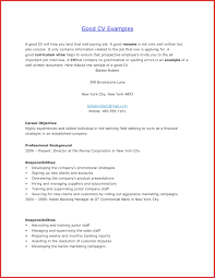 It Resume Examples Luxury Good Resume Example resume pdf 44