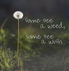Quotes About Perspective New 48 Excellent Quotes To Put Life In Perspective EyeObserver