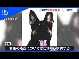 警察 犬 クレバ