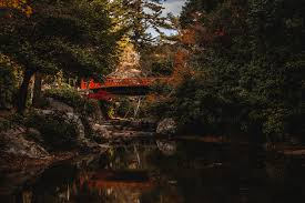 Wallpaper Japan Bridge On Miyajima Island Canal Nature