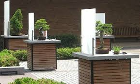 bonsai gardens. bonsai garden, chicago gardens